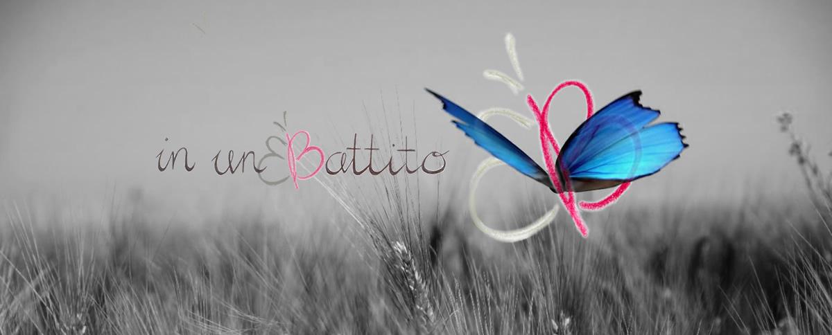 farfalla-colorata